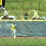 Softball fan makes great catch on home run ball, immediately falls out of pickup truck